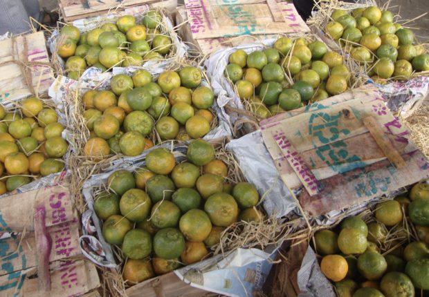 Obstkisten auf einem Markt in New Delhi